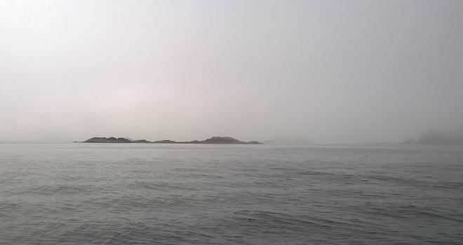 Barkley fog 1