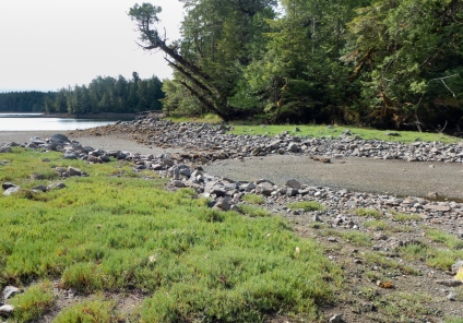 Old First Nations fish trap at low tide.